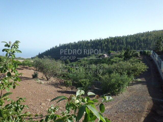 Terreno rústico en Cruz de Tea, Granadilla
